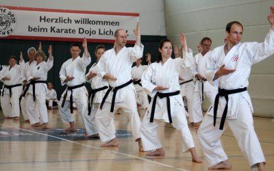 Schwitzen im Zeichen des Tigers – 23. Sommerschule des Karate Dojo Lich